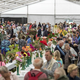 Chorley Flower Show Tickets | Astley Hall Coach House And Park Chorley  | Sat 31st July 2021 Lineup