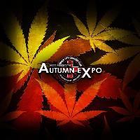 DCCC Presents The Autumn Expo