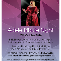 Adele Tribute Night