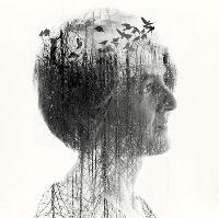 Karine Polwart: Wind Resistance