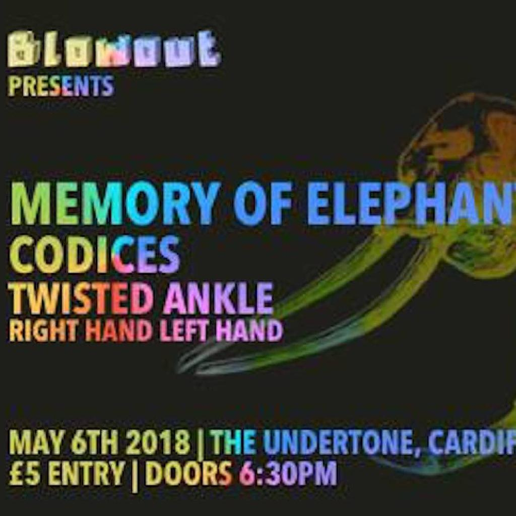 Blowout Presents - Memory of Elephants + Support
