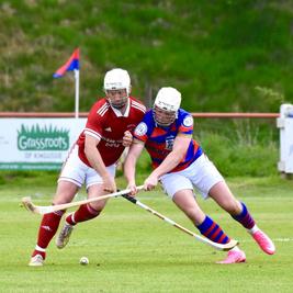 Cottages.com MacTavish Cup Final