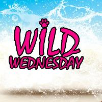 wild wednesday - freshers launch party
