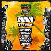 Hastings Reggae Festival 2020