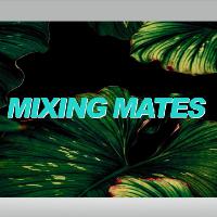 Mixing Mates w/ Blasha & Allatt [All Night Long]