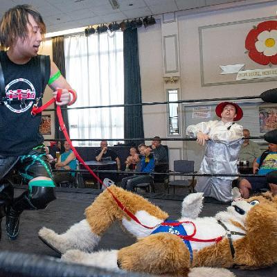 Mr Cat's Wrestling- July 5th 2019