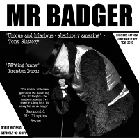 Mr Badger - Punching Down