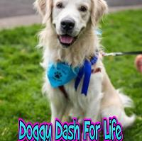 Doggy Dash For Life