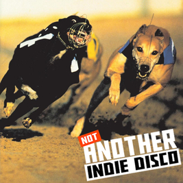 The Return of Not Another Indie Disco