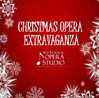 Christmas Opera Extravaganza with NWOS