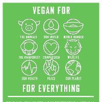 Vegan Fest # 4