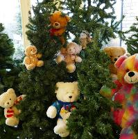 Teddy Bears Picnic and Afternoon Tea