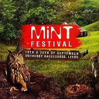 Mint Festival - 2015