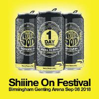 Shiiine On : Birmingham  (Orbital, Happy Mondays & Shed Seven)