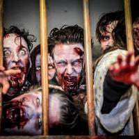 Zombie S.W.A.T Training