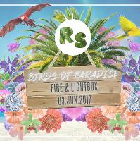 Regression Sessions - Birds Of Paradise - Fire & Lightbox