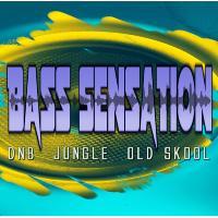BASS Sensation **Launch night**