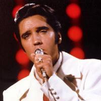 All Shook Up Elvis Tribute Night