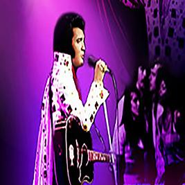 Elvis Tribute Night - Bilston