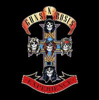 THE GUNS N ROSES EXPERIENCE + SPECIAL GUESTS