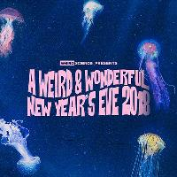 A Weird & Wonderful New Year's Eve 2018
