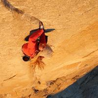 Hazel Findlay – The Climb Within