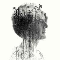 Karine Polwart presents Wind Resistance