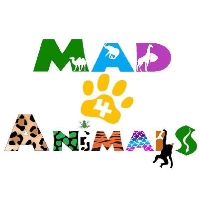 Mad4Animals - Interactive Zoological Show (Afternoon Show)