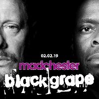 Black Grape Live in Concert