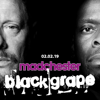Black Grape Live in Concert