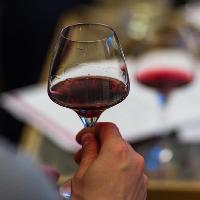 Cruise Themed French Wine Tasting hosted by Le Vignoble