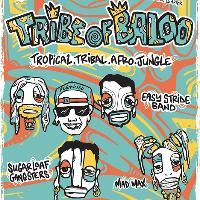 Tribe Of Baloo
