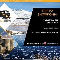 Newcastle > Snowdonia