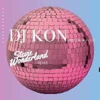 A Disco Odyssey: Kon & Stevie Wonderland