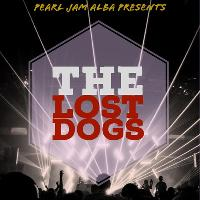 The Lost Dogs - Grunge Tribute Night