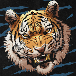 NYE W/ Jungle Cakes, Ed Solo, Deekline , Kleu, Jam Thieves