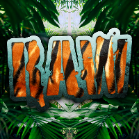 RAW: Bassline Safari (Jungle vs Garage vs Bass Classics Night)