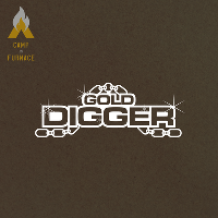 Gold Digger // Hip Hop & RnB