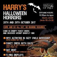 Harry's Halloween Horrors