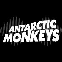 Arctic Monkeys (tribute Antarctic Monkeys)