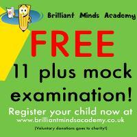 11 PLUS- Free mock exam