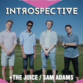 Introspective // The Juice // Sam Adams