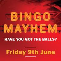 Bingo Mayhem