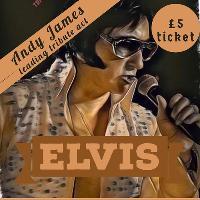 Disco & Elvis Tribute