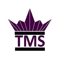 TMS - The Revolution