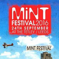 Mint Festival 2016
