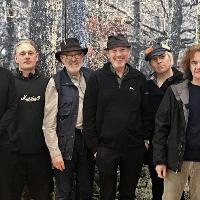 The David Cross Band