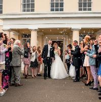 Wedding Extravaganza