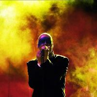 Stipe (R.E.M Tribute