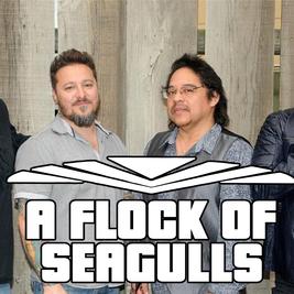 A Flock Of Seagulls / MK11 Milton Keynes / 2nd April 2022